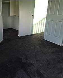 image of carpet after redyeing